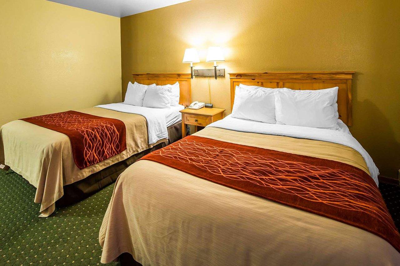 Comfort Inn Kodiak 95 1 7 Prices Hotel Reviews Island Ak Tripadvisor