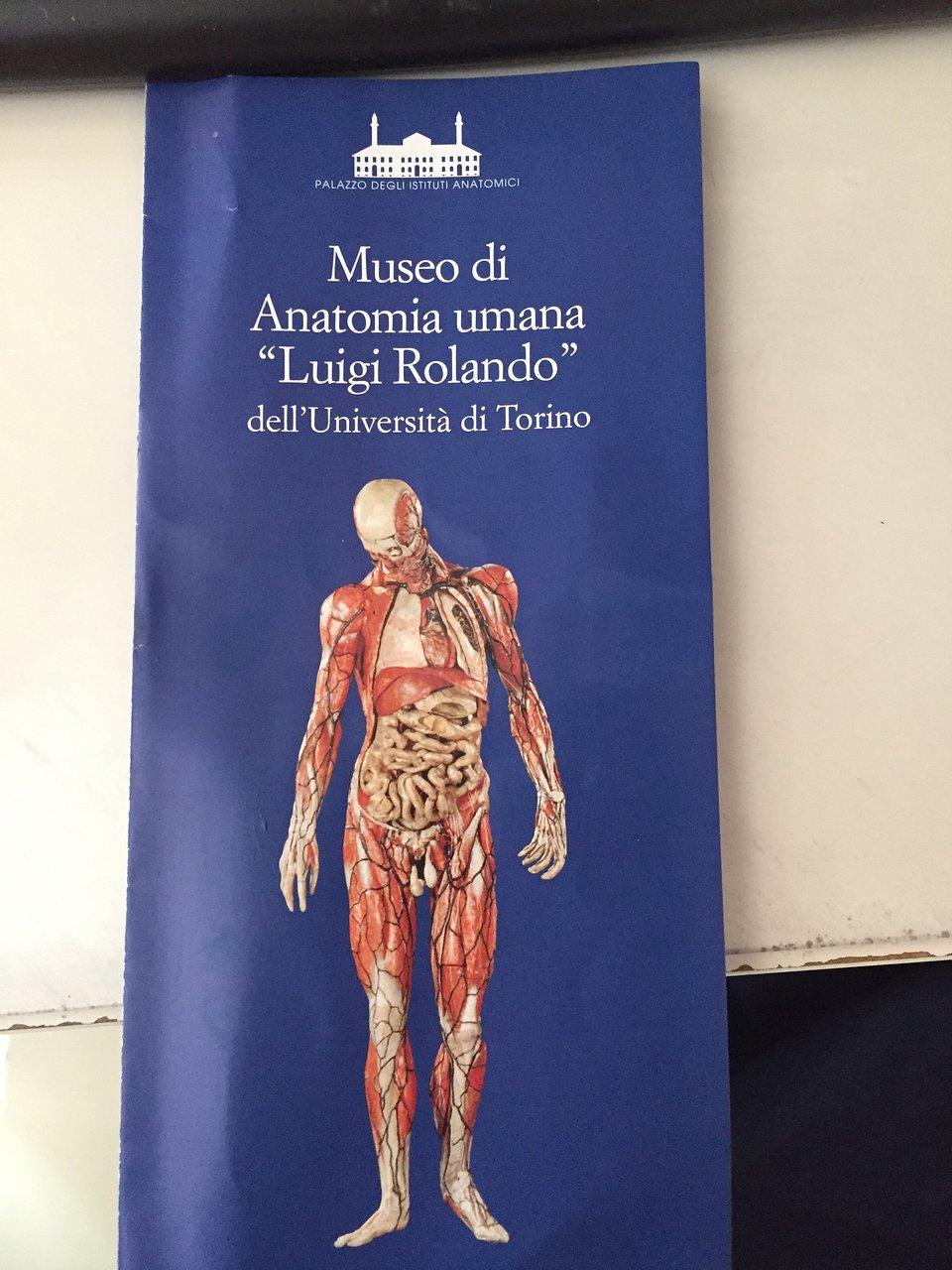 Museo di Anatomia Umana (Turín) 2020 Qué saber antes de ir