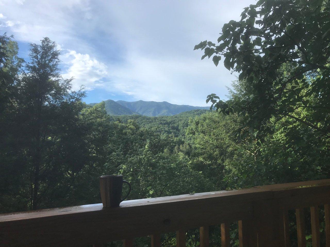 mountain shadows resort & rentals - updated 2018 hotel reviews
