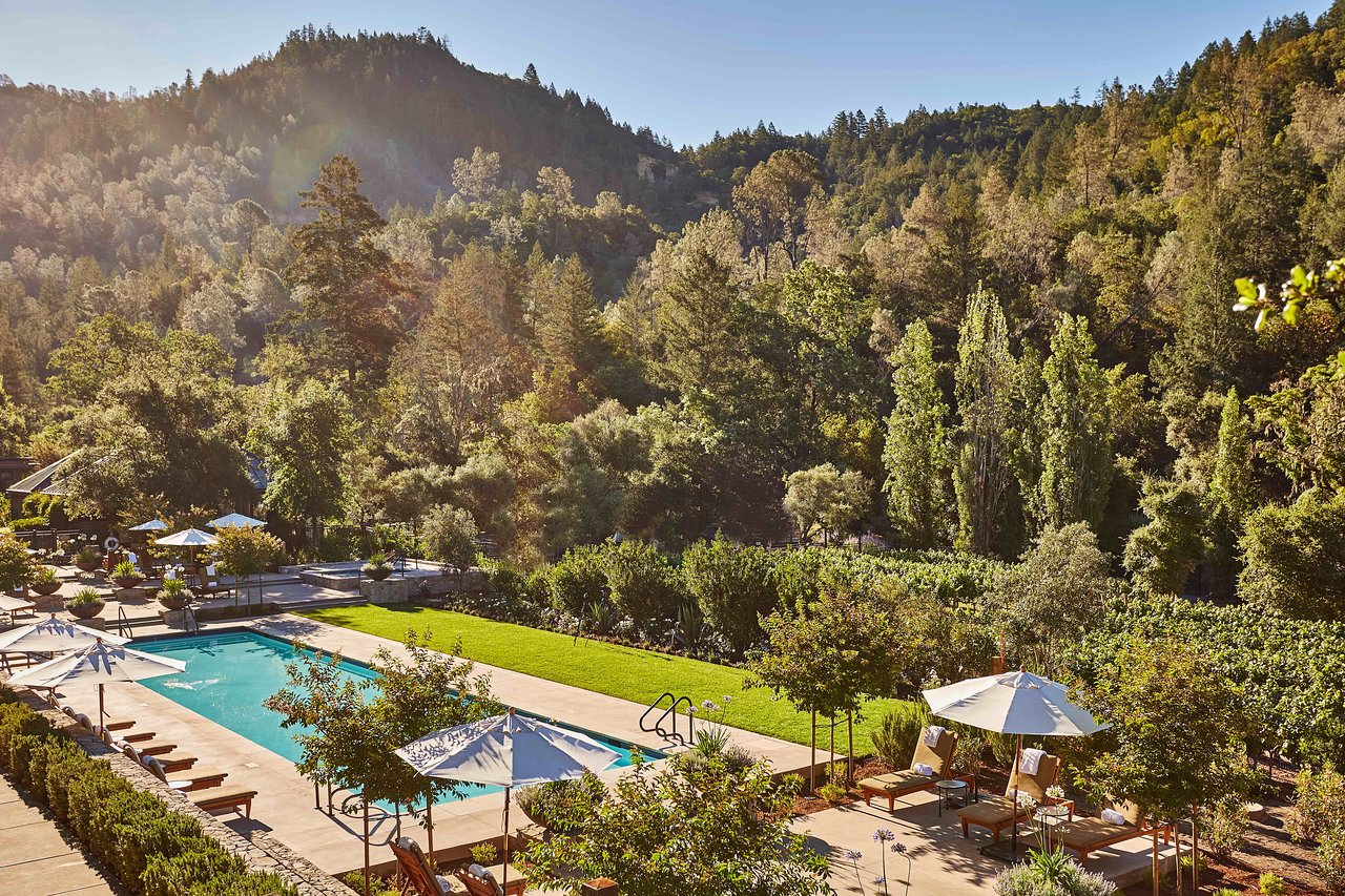 Hotel lap pool surrounded by a forest