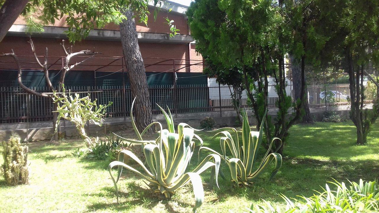 SOGGIORNO SAN GAETANO (Santa Severa, Italy) - Hotel Reviews, Photos ...