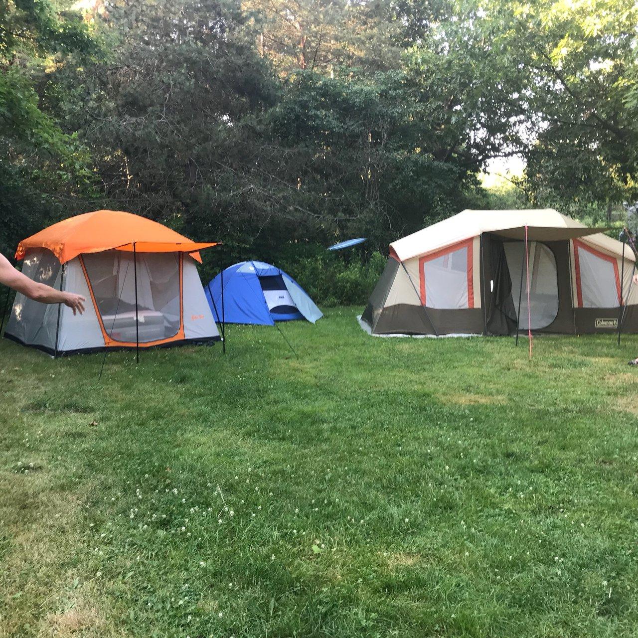 KEUKA LAKE STATE PARK CAMPGROUND - Updated 2019 Reviews