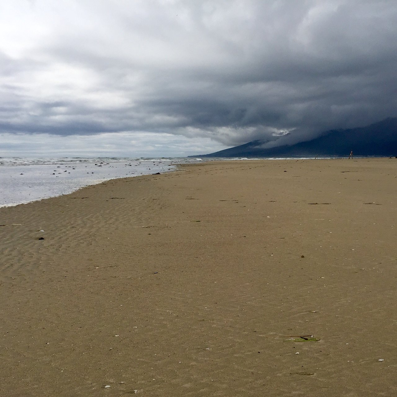 Scientists studying Co Down beach system to find out how