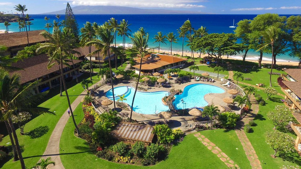 the 5 best pet friendly hotels in maui of 2019 with prices rh tripadvisor com