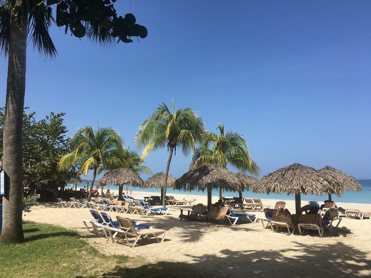beaches negril resort spa all inclusive resort reviews price rh tripadvisor co nz