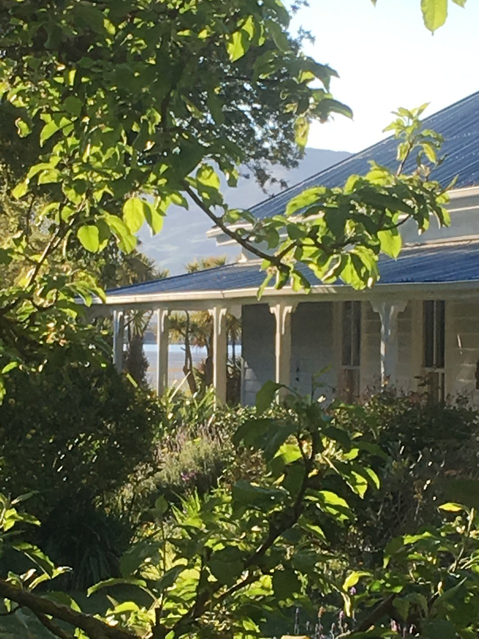 halfmoon cottage updated 2019 prices reviews akaroa new rh tripadvisor com
