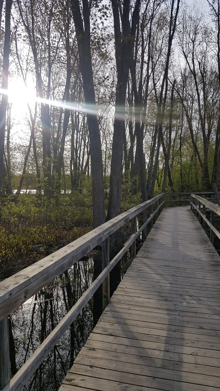 Carleton place nature trail