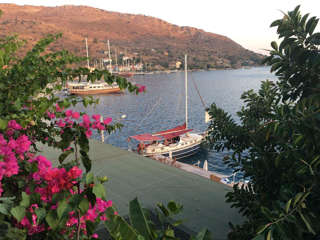 Turkey. Hotel Dolphin. Photos and reviews 35
