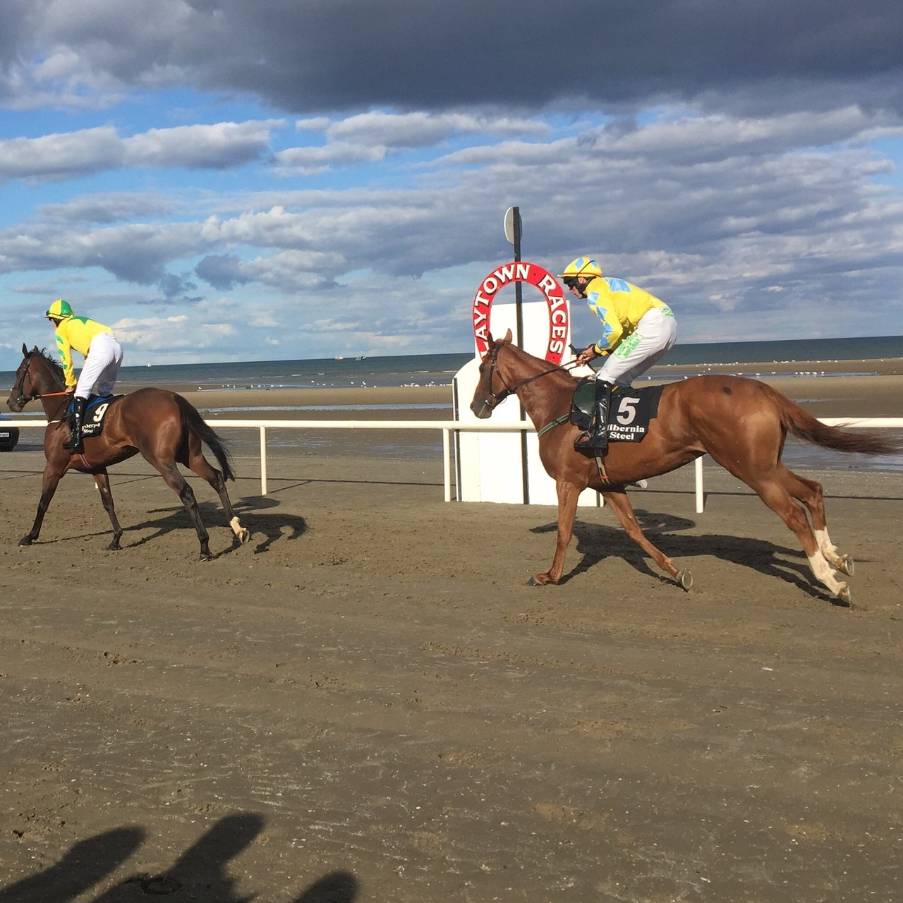 Laytown Races - 2020 All You Need to Know Before You Go
