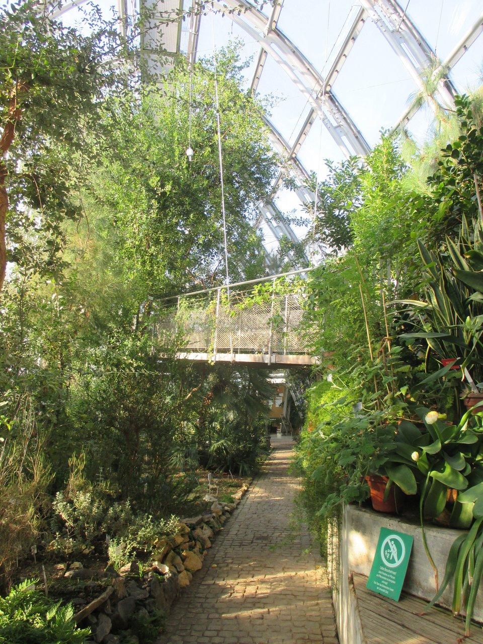 Botanical Garden Botanischer Garten Graz Aktuelle 2021 Lohnt Es Sich Mit Fotos