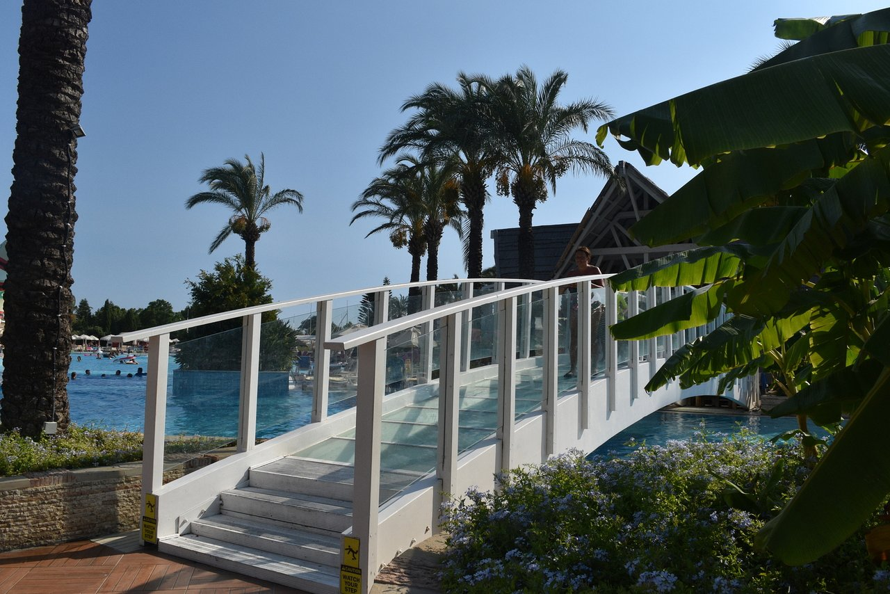 Turkey. Hotel Dolphin. Photos and reviews 92