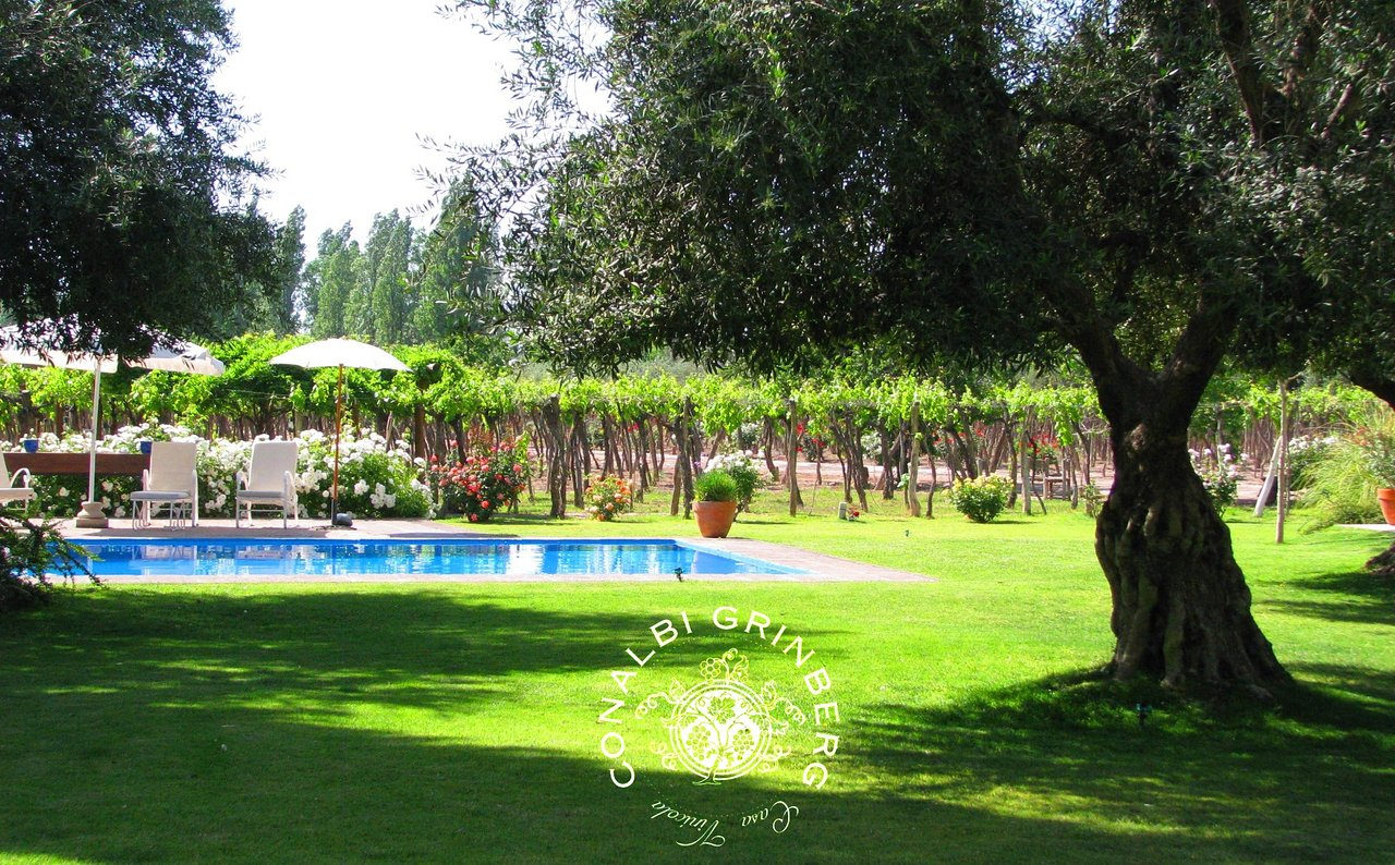 CONALBI GRINBERG CASA VINICOLA - Prices & B&B Reviews (Mendoza ...