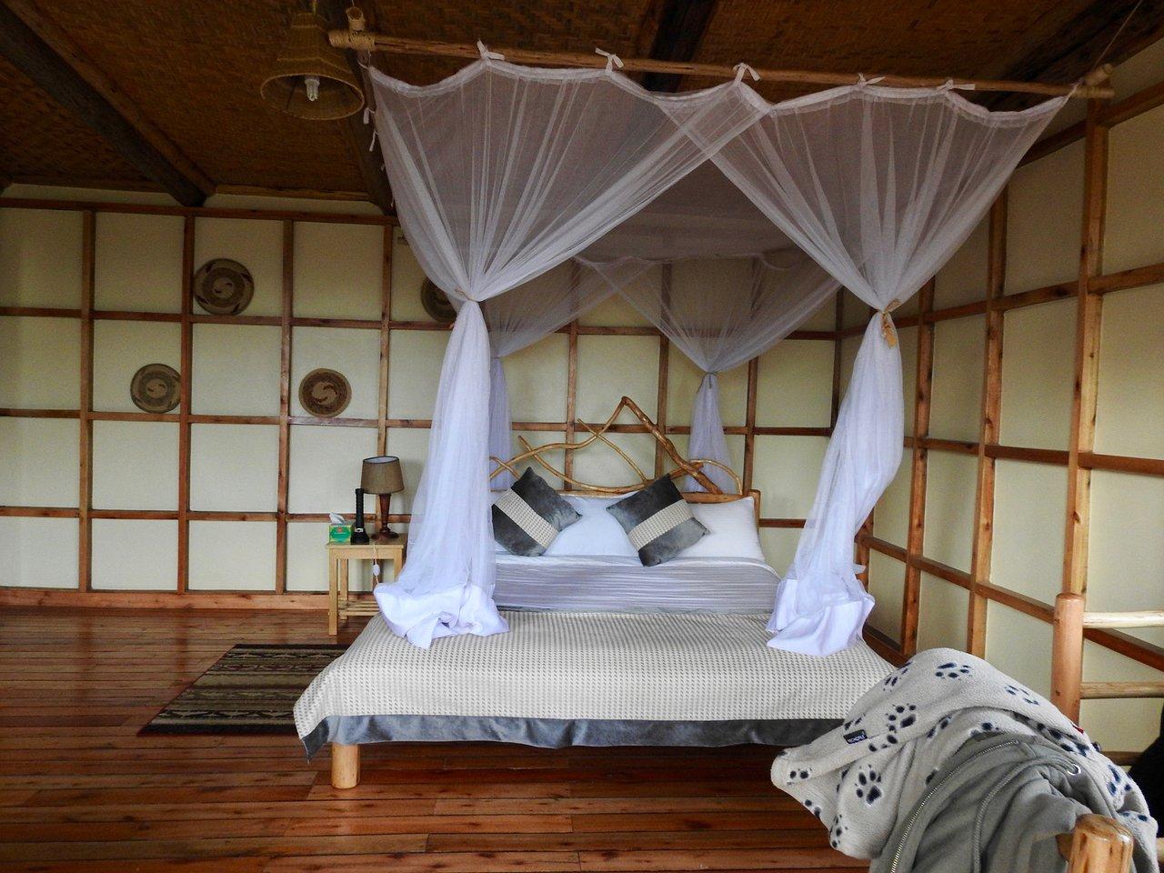 GORILLA SAFARI LODGE (Uganda/Bwindi Impenetrable National Park ...