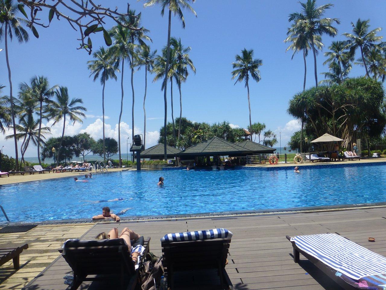 Sea Bird Beach Hotel 4. Hotel Reviews