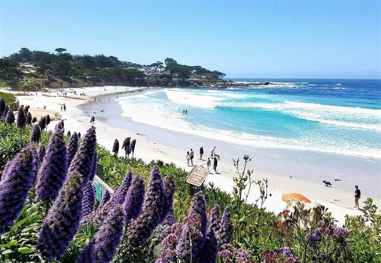 Carmel Beach Boardwalk Atualizado