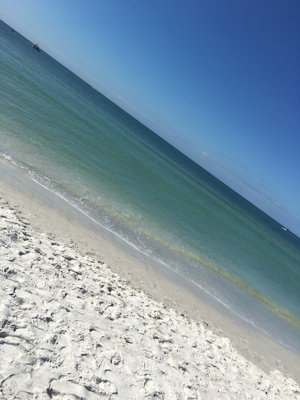 Sirata Beach Resort 135 3 6 Updated 2018 Prices Reviews St Pete Florida Tripadvisor