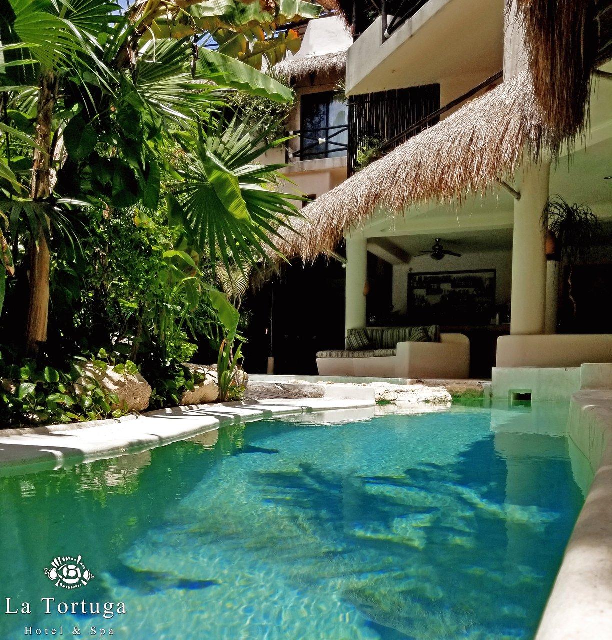 La Tortuga Hotel Spa 139 2 5 4 Updated 2018 Prices Reviews Riviera Maya Playa Del Carmen Mexico Tripadvisor