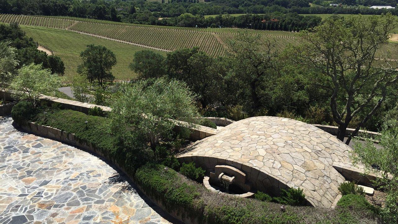 Javis Flexi wall and hedge