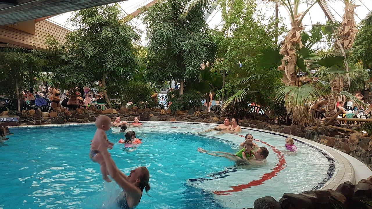 Het Vennenbos Zwembad.Landal Het Vennenbos Hapert Nederland Foto S En Reviews