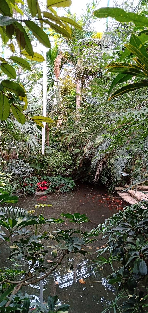 Jardin des Serres d\'Auteuil (Paris) - Aktuelle 2019 - Lohnt ...