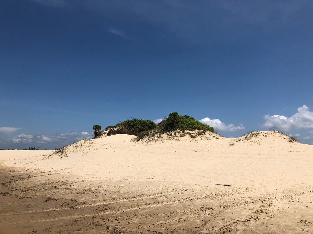 Dunas Do Araca Ilha Comprida Atualizado 2020 O Que Saber Antes