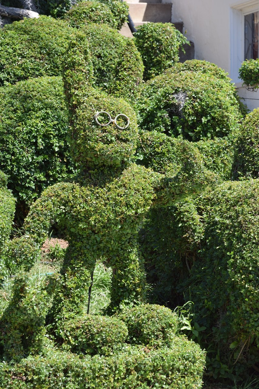 Harper S Topiary Garden San Diego 2020 All You Need To Know
