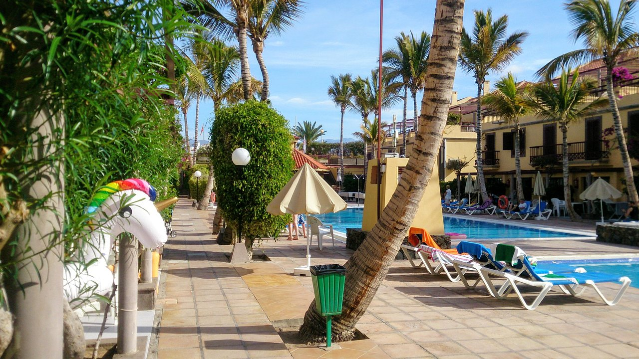 Maspalomas Oasis Club Updated 2019 Prices Resort Reviews And Photos Gran Canaria Tripadvisor