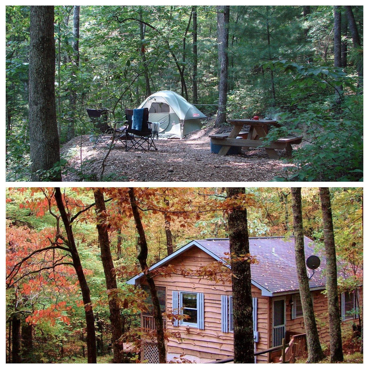 ash grove mountain cabins camping updated 2019 prices rh tripadvisor com
