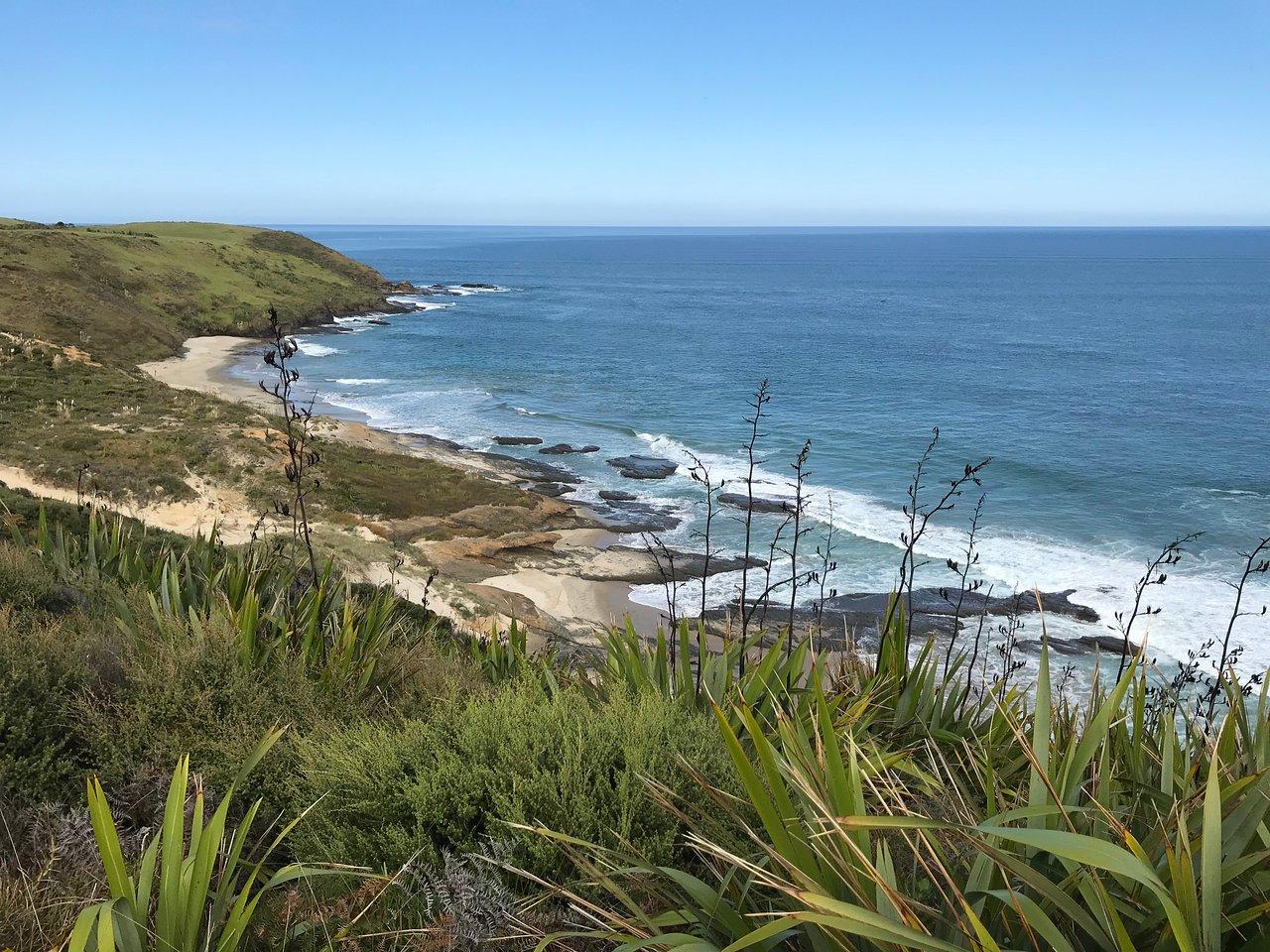Resultado de imagen de Arai Te Uru Heritage Walk