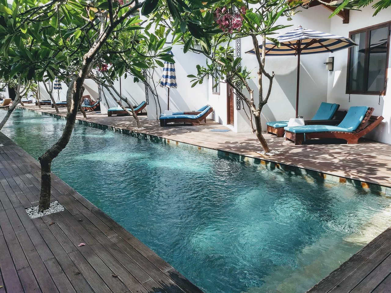 10 hotel terbaik tahun 2019 di lombok tripadvisor rh tripadvisor co id