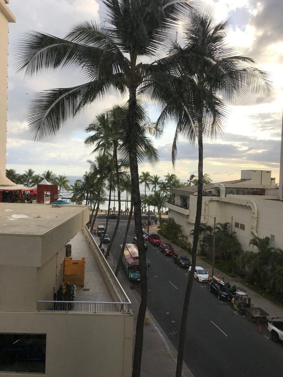 bar 35 Honolulu vitesse datation Bear Hook up App