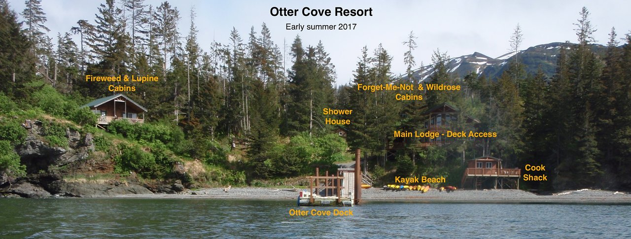 OTTER COVE RESORT - Prices & Hotel Reviews (Kachemak Bay