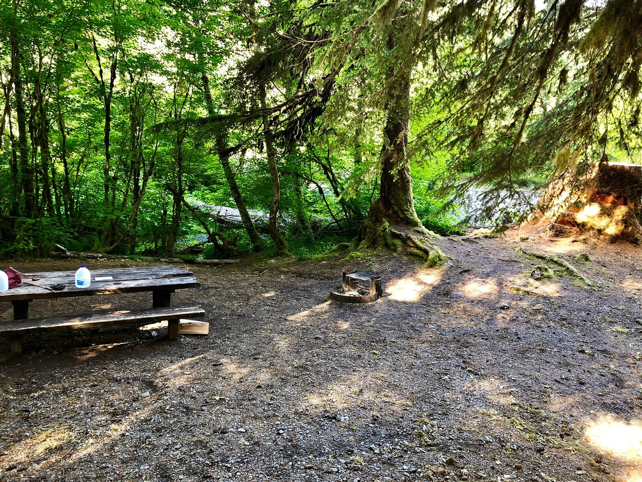 SOL DUC CAMPGROUND - Updated 2019 Reviews (Olympic National Park, WA