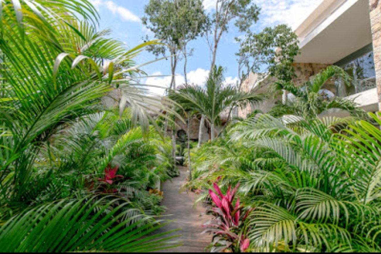 Hotel Alma De Flores Updated 2019 Prices Lodging Reviews Tulum