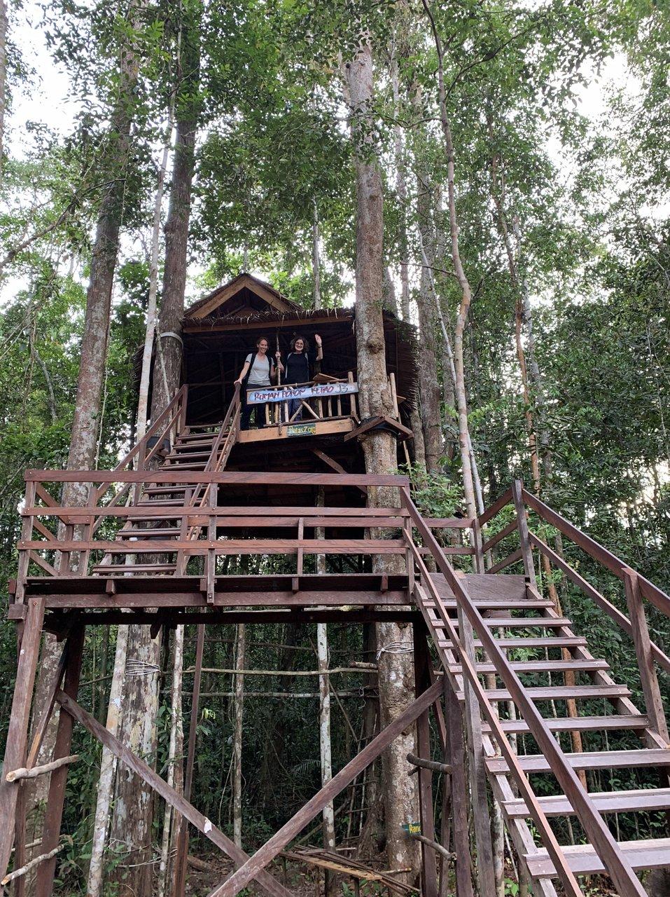 Jurung Tiga Nature Park (Pangkalan Bun, Indonesia) - Review
