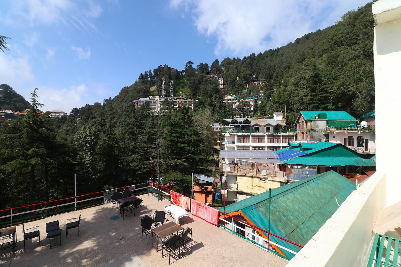 Visit to Birds n Chirps Dalhousie - Review of Birdsnchirps Homestay