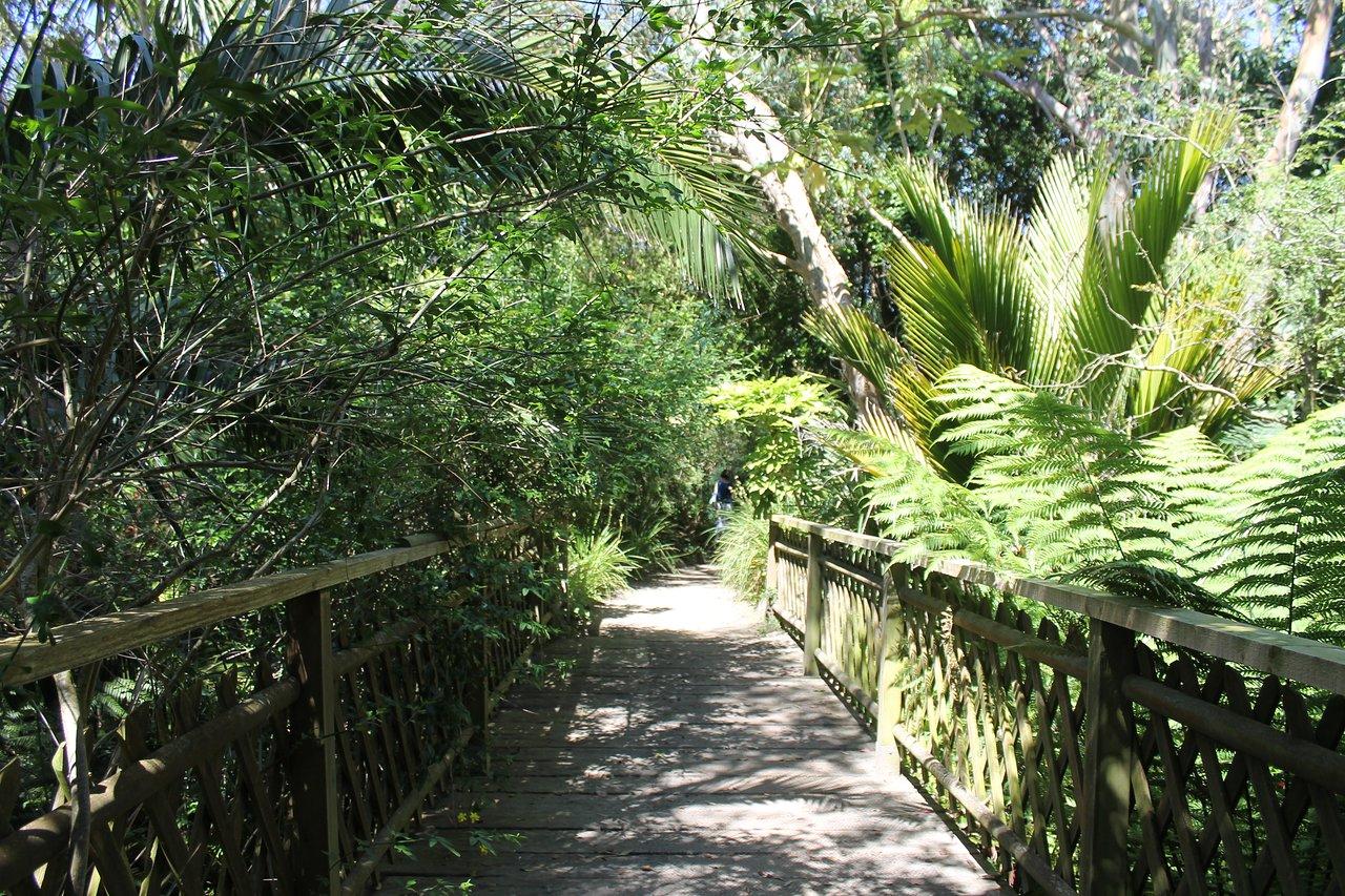 Photo Petit Jardin Exotique jardin exotique et botanique de roscoff : 2020 ce qu'il faut