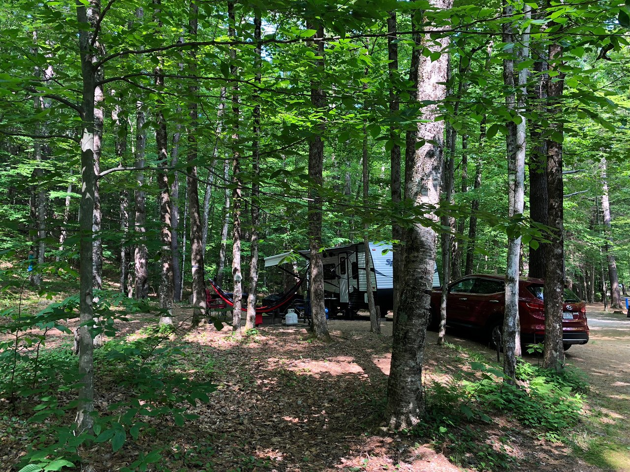 Mohawk Trail State Forest Charlemont   20 All You Need to Know ...