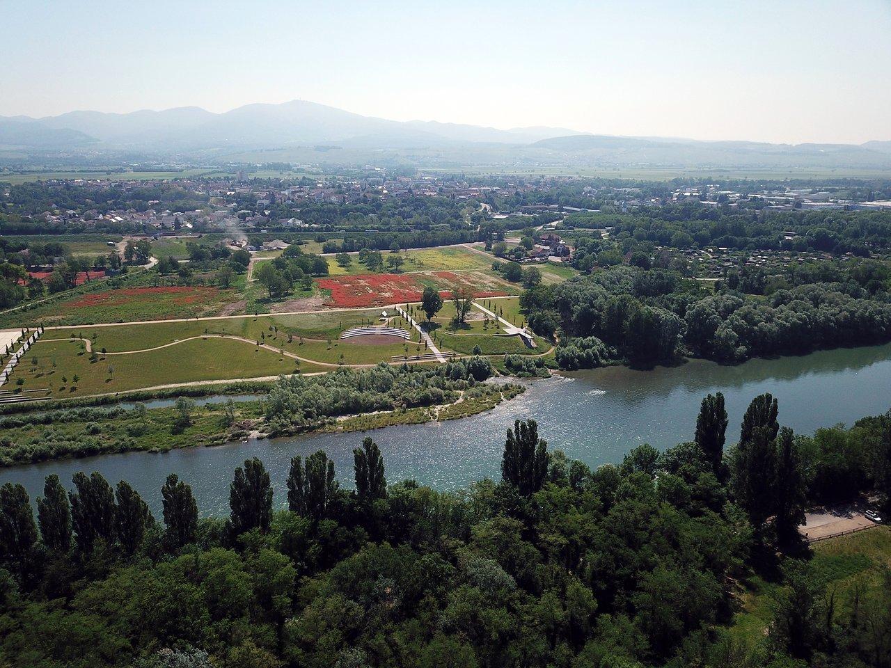 Hure Neuenburg am Rhein