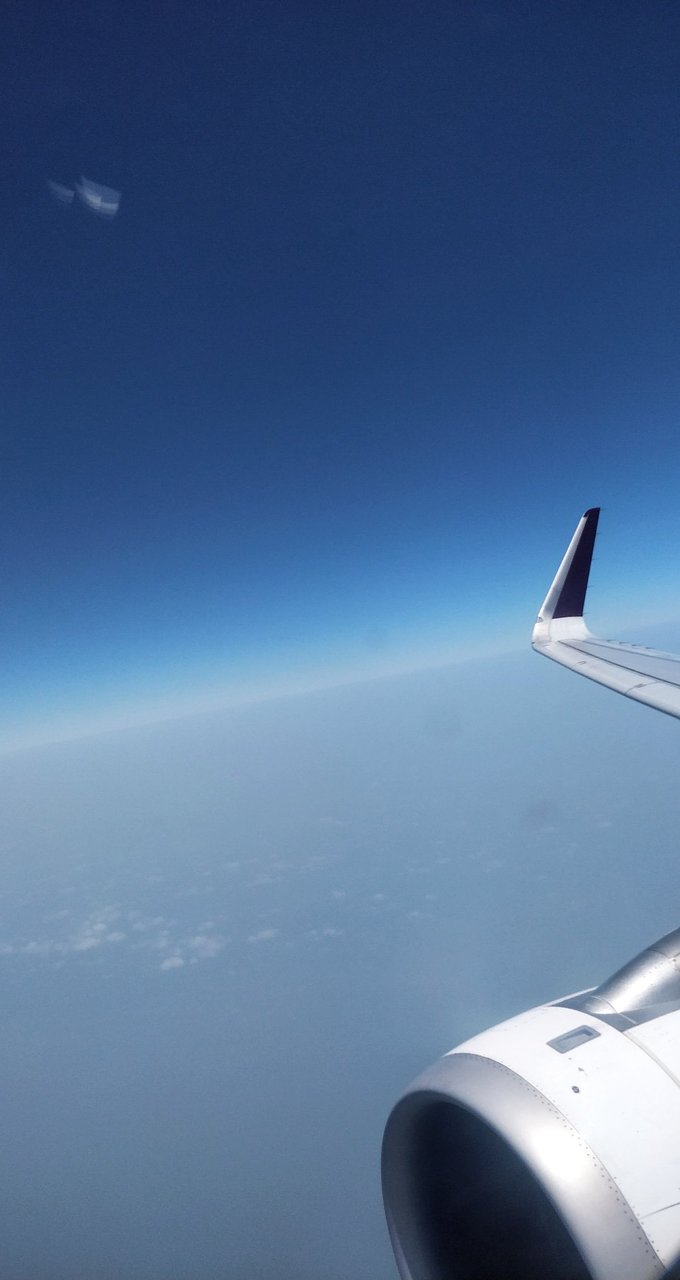 Vistara Flights and Reviews (with photos) - TripAdvisor