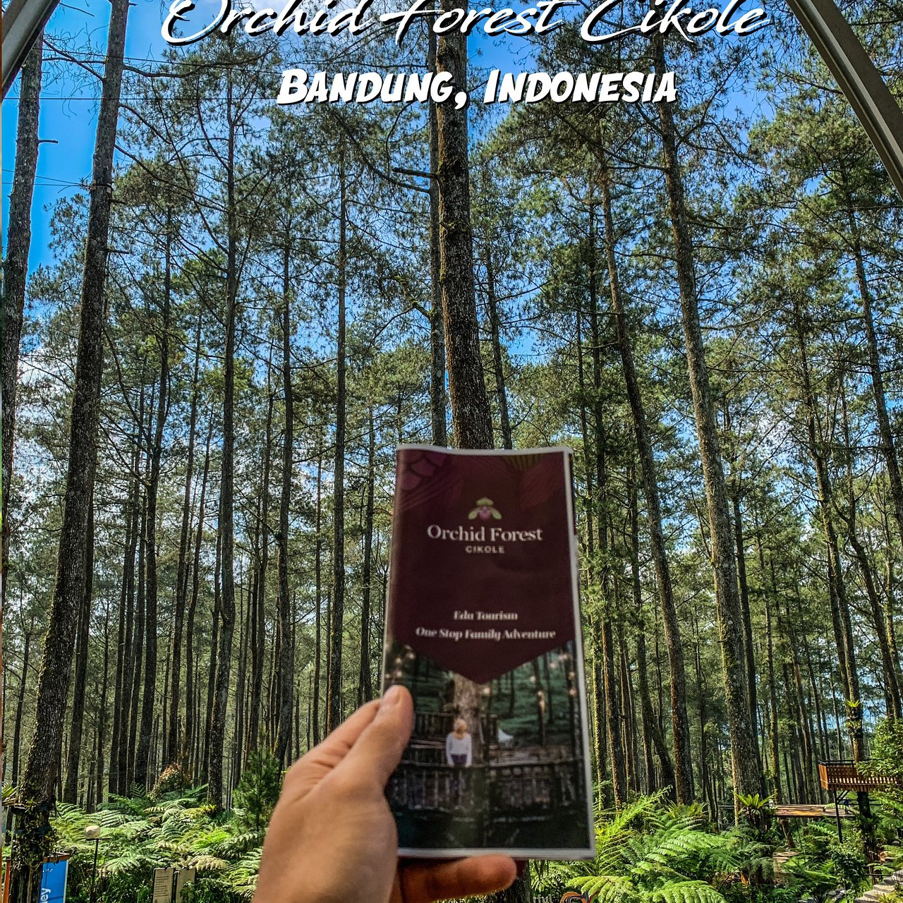 Orchid Forest Lembang 2020 All You Need To Know Before