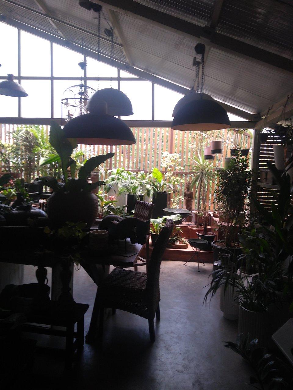 The Purple Turtles Bangalore | Tripadvisor