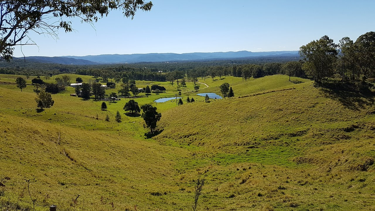 D Aguilar National Park Brisbane Updated 2020 All You Need To Know Before You Go With Photos