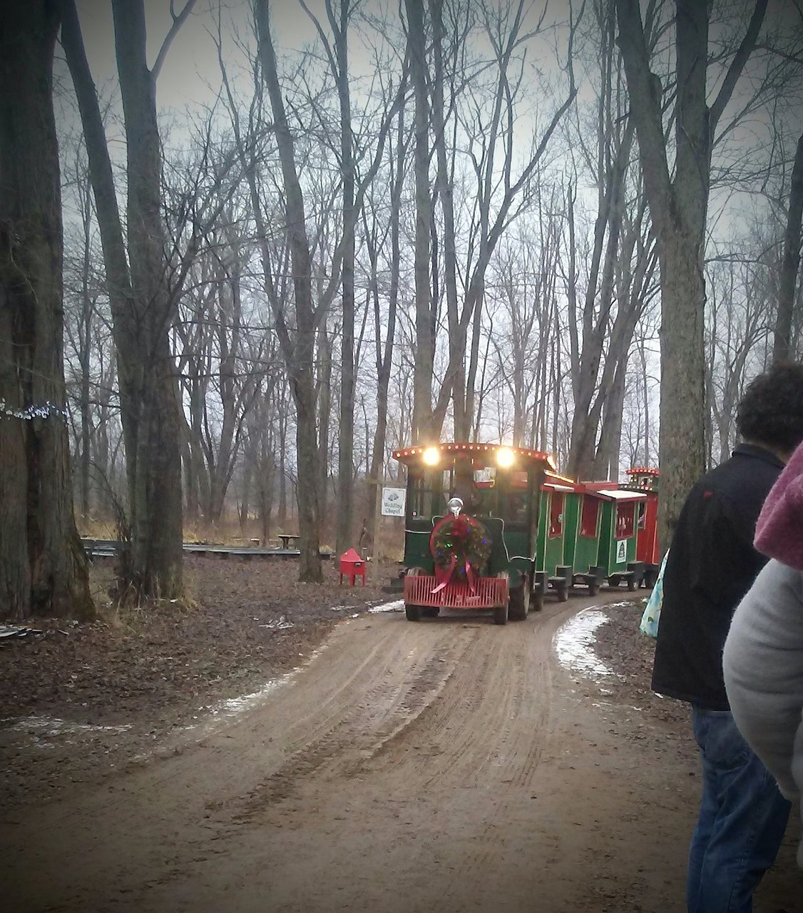 Peacock Road Family Farm Laingsburg All You Need To Know Before You Go Updated 2021 Laingsburg Mi Tripadvisor