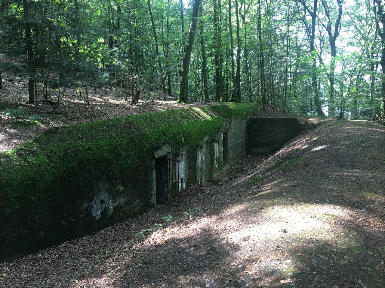 Silkeborg Bunker Museum Danmark Anmeldelser