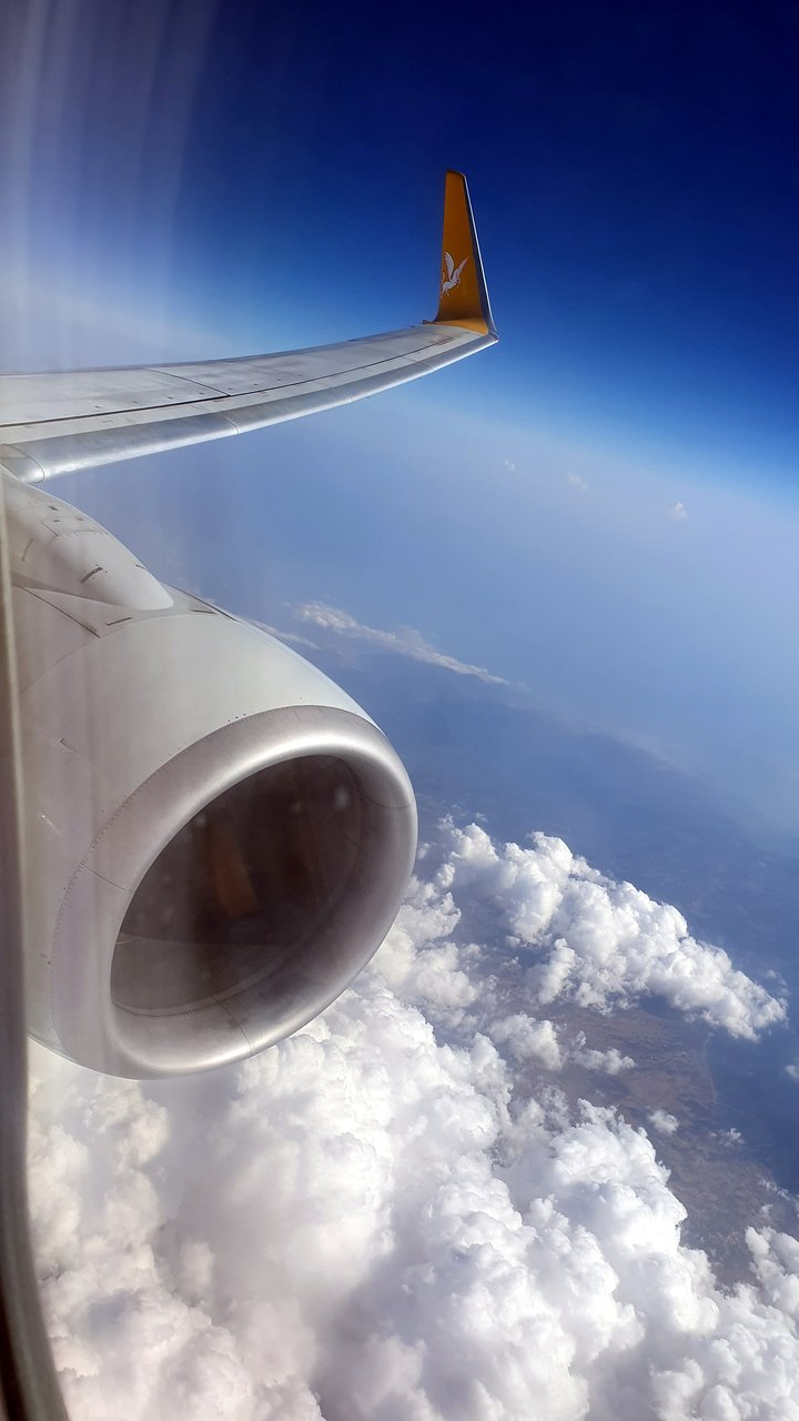 nouveau style 93fd7 142b7 Avis et vols sur Pegasus Airlines - TripAdvisor