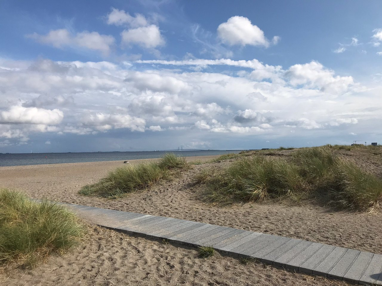 Amager Beach Park amager strandpark (copenhagen) - 2020 all you need to know