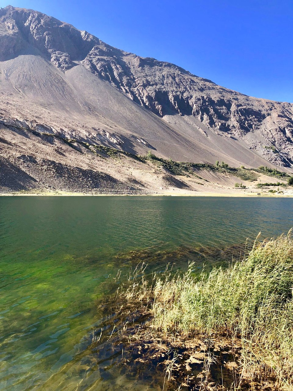 Borith Lake Hunza 2020 All You Need to Know BEFORE You