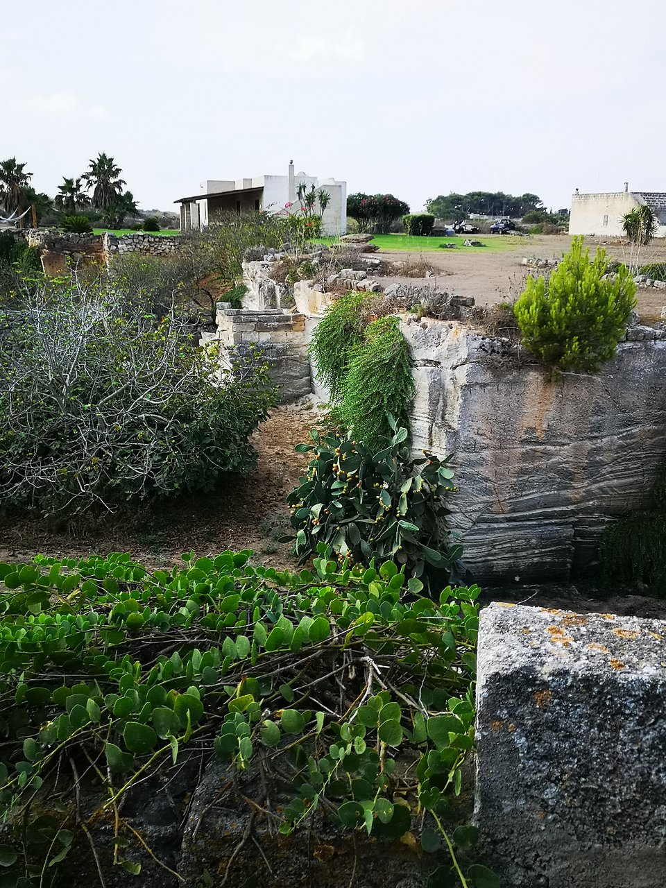Aloe In Giardino villa margherita giardini ipogei (isola di favignana) - 2020