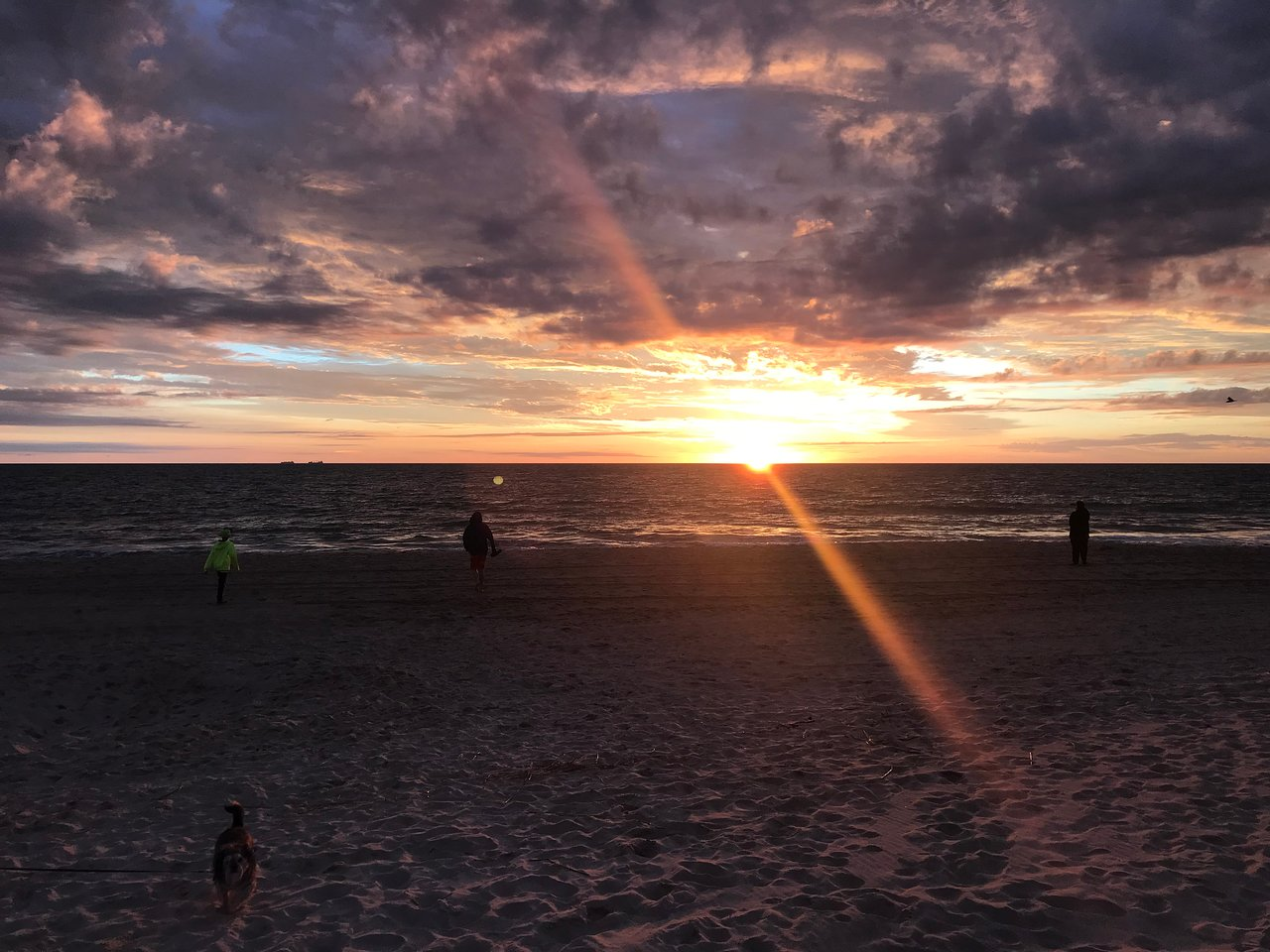 Dewey Beach 2020 All You Need To Know Before Go With